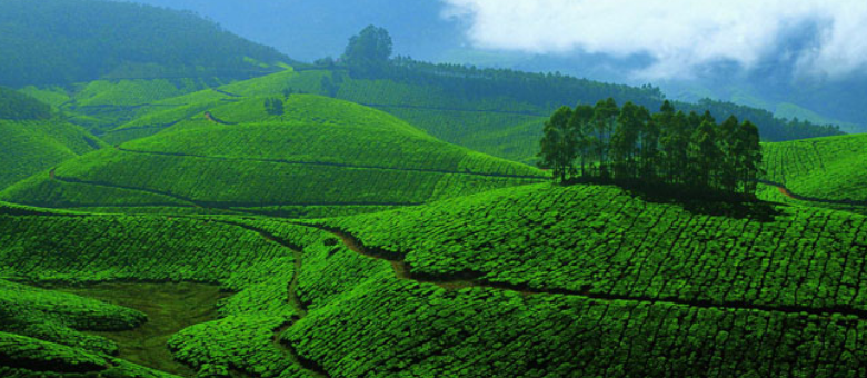 Kerala Travel - God's Own Country