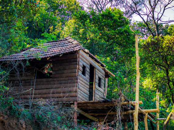 10 Best Places to visit in Coorg