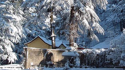 Tourism in Shimla