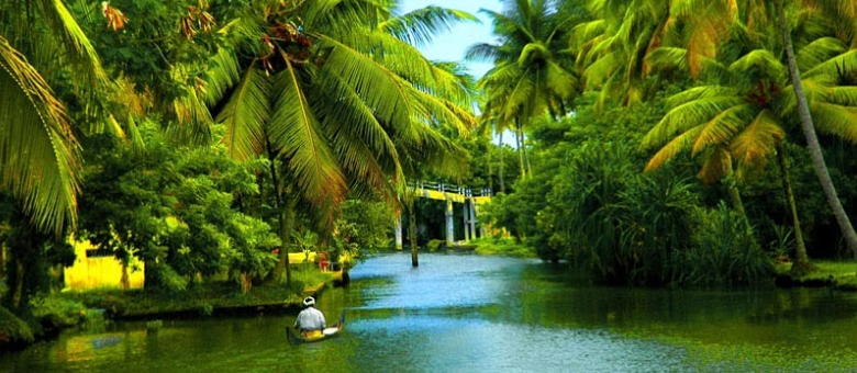 20 Best Tourist Places in Kerala that You Must Visit