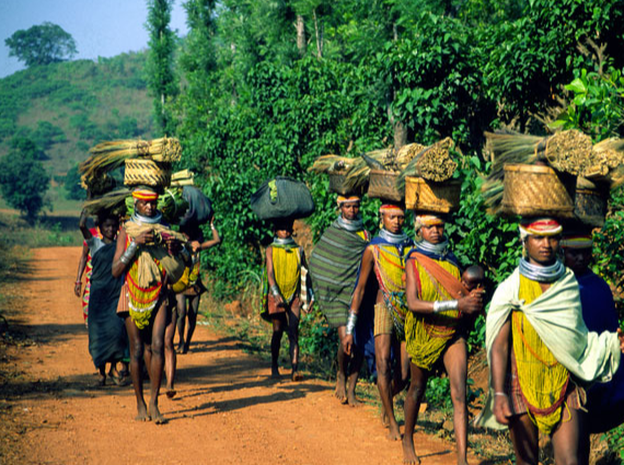 Top 5 Tribal Tour places in India